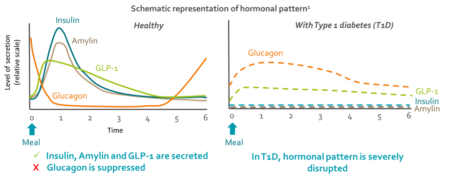 Hormonal pattern